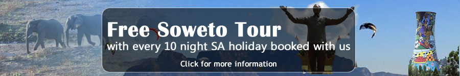 Free Soweto Tour Offer
